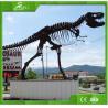 Buy cheap KAWAH Artificial Simulation Dinosaur Bons and Fossil from wholesalers