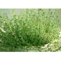 Buy cheap Anti Bacterial Natural Essential Oils Thyme Oil With Thymol CAS 8007 46 3 product