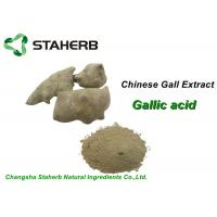 Cosmetic Pure Natural Plant Extracts , Gallnut Extract Powder Gallic Acid CAS 149 91 7