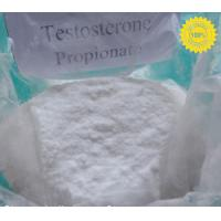 Buy quality Body building injection Testosterone Propionate CAS 57-85-2 at wholesale prices