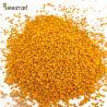 100% Organic Raw Bee Pollen 20kgs Raw Pot Bee Pollen Bee Vitamins Big Granual Organic Bee foods Factory Directly for sale