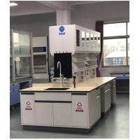 Customized Chemical Laboratory Furniture With Stainless Steel Hinge
