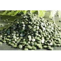 Buy cheap chlorella and spirulina tablets manufacturer/250mg,500mg/tablet/brand private OEM services product