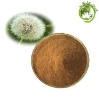 Buy cheap Factory Supply 100% Natural Organic Dandelion Root Extract/Dandelion Root Powder product