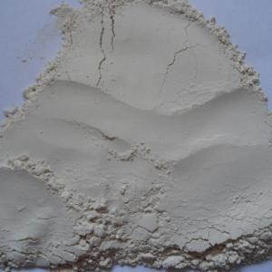 Rice Protein Powder 70%