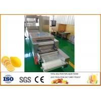 China Freeze-drying Lemon Processing Machinery Silver Color CFM-FD-200 on sale
