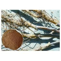 Buy cheap Apple Tree Root Pure Natural Plant Extracts , Extraction Of Medicinal Plants CAS 60 82 3 product