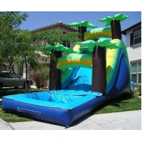Buy cheap Tropical Water Slide product