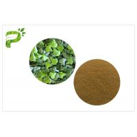 Buy cheap Cough Treat Pure Herbal Supplements Ivy Leaf Extract Hedera Helix Hederacoside 10% product