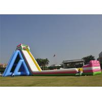Buy cheap Customized Inflatable Giant Slide Recreational Hippo Animal Theme Design With  Blower product