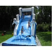 Buy cheap Inflatable Water Slides (Water Slide-20) product