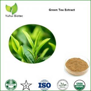 China ecg green tea extract,green tea extract supplements,green tea extraction polyphenols on sale