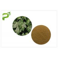 Buy cheap Ivy Leaf Herbal Plant Extract Hedera Helix Hederacoside Promote Blood Circulation For Dietary Supplement product
