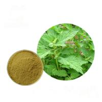 Buy cheap Plant Pure Natural Isodon Rubescens Extract 0.5% - 98% Oridonin Powder from wholesalers