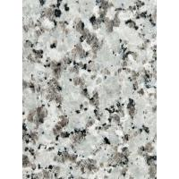 Buy cheap Decorative Granite Stone Tiles / White Galaxy Granite Floor Tiles product