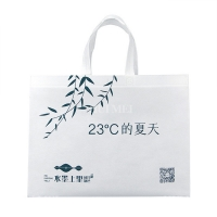 Waterproof Printed PP Promotional Non Woven Shopping Bags Biodegradable for sale