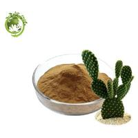 Buy cheap High Quality Cactus Extract for Weight Loss; Caralluma Fimbriata Extract Ratio 10/1 Extraction For Cosmetic Field product