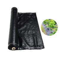Buy cheap Recyclable Black Plastic Ground Cover , PP Woven Fabric Roll For Agriculture / Garden product