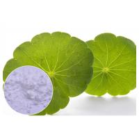 Buy cheap Cosmetic Herbal Plant Extract Centella Asiatica Powder With Madecassoside 90% from wholesalers