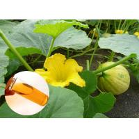 Buy cheap Pumpkin Seed Oil Prevent Prostate Natural Dietary Supplements Food Grade from wholesalers