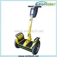 Two Wheeled Self Balance Electric Scooter Free Standing Segway I2 47Kg