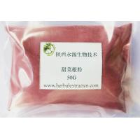 Quality Best Quality Natural Pigment Beet root extract with betaine, choline, ferulic for sale
