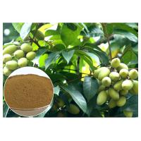 Buy cheap Oleuropein Natural Olive Leaf Extract Natural Ingredient With HPLC Test product