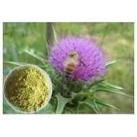 Buy cheap Silymarin Herbal Plant Extract Milk Thistle Powder From Seed Light Yellow Anti - Cancer product