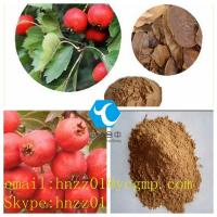 CAS 3681-93-4  Bulking Cycle Steroids Hawthorn Extract--Vitexin Yellow Fine Powder