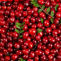 Buy cheap Anti Aging Organic Food Ingredients Freeze Dried Cranberry Powder Prevents Scurvy product