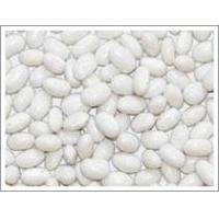 Buy cheap White Kidney Bean (JNFT-063) from wholesalers