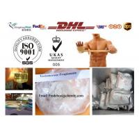Buy cheap Raw steroid powders Testosterone Propionate 57-85-2 For Muscle Building product