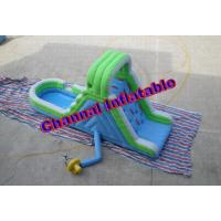 Buy cheap Inflatable Blue and Green Water Slide (Residential) product