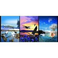 Buy cheap 3D pictures product