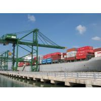 Buy cheap Sea Freight Shipping Shenzhen to Rotterdam/Hamburg/Antwerp,Europe product