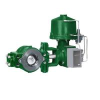 Quality Green Fisher Diaphragm Actuator , Fisher Gas Regulator V250 Control Valve for sale