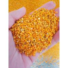 Mixed Fresh 20kgs Raw Honey Bee Pollen Full Of Nutricion Big Granual for sale