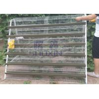 Buy cheap A Type Mesh Layer Quail Bird Cage Of Low Carbon Steel Wire With Sand Cup from wholesalers