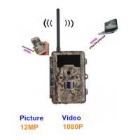 Buy cheap Outside Wild Game Infrared Trail Hunting Camera , CE / ROHS / FCC Approvals product