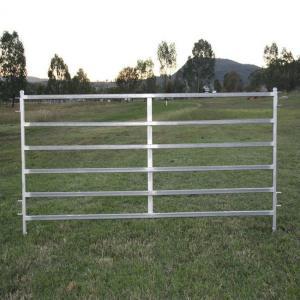 Buy cheap 1800 X 2100mm Corral Fence Panels 40 X 40mm /50 X 50mm RHS X 1.6mm /2.0mm product