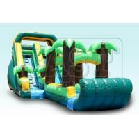 Buy cheap Inflatable Water Slides (E3-019) product