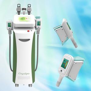 Latest big hands high quality fat freeze profestional cryolipolysis slimming machine