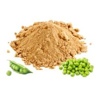Buy cheap Pea Protein Isolate-High Quality NON-GMO 80% & 85% product