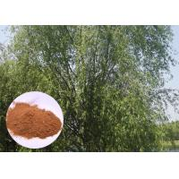 Buy cheap Salicin 98% Antifungal Plant Extracts White Willow Bark Extract Relieving Headache product