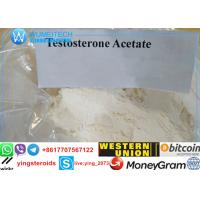 Bodybuilding Androgenic Steroids Powder Aceto-sterandryl / Test Ace 1045-69-8