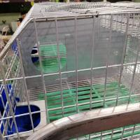 Buy cheap commercial female rabbit cage automatic rabbit cage mother rabbit cage for sale product