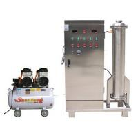China 200g/h 380 volt sewage water treatment ozone machine system on sale
