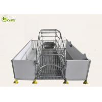 Buy cheap Good Warming PVC Board Hog Farrowing Cage Automatic Piglet Nursery Stall Pen product