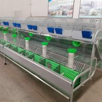 Buy cheap High Quality Galvainzed female rabbit poultry equipments cheap rabbit cages for sale product