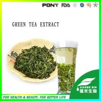 China Natural Green Tea Extract Polyphenol 98%,95%,90% on sale